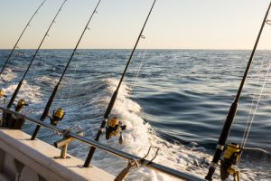 Heading out to deeper ocean on a fishing charter